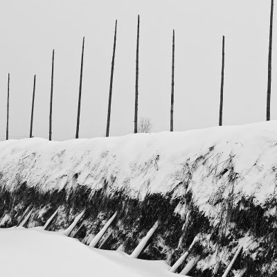 Зима в деревне Никольское